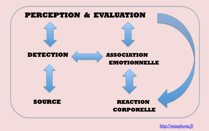 Schema-Reaction-Misophonie